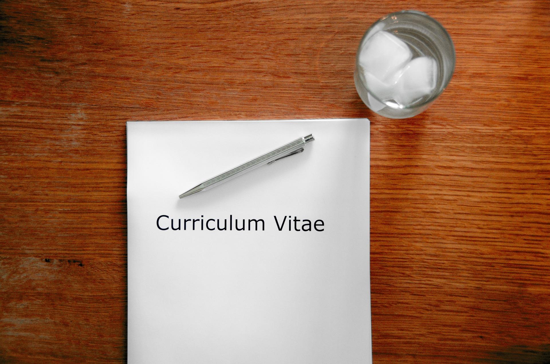 Curriculum vitae experto